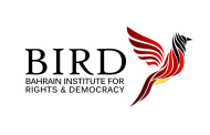 Winter Internship at BIRD