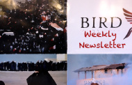 BIRD Weekly Newsletter #48: Death Sentences Upheld