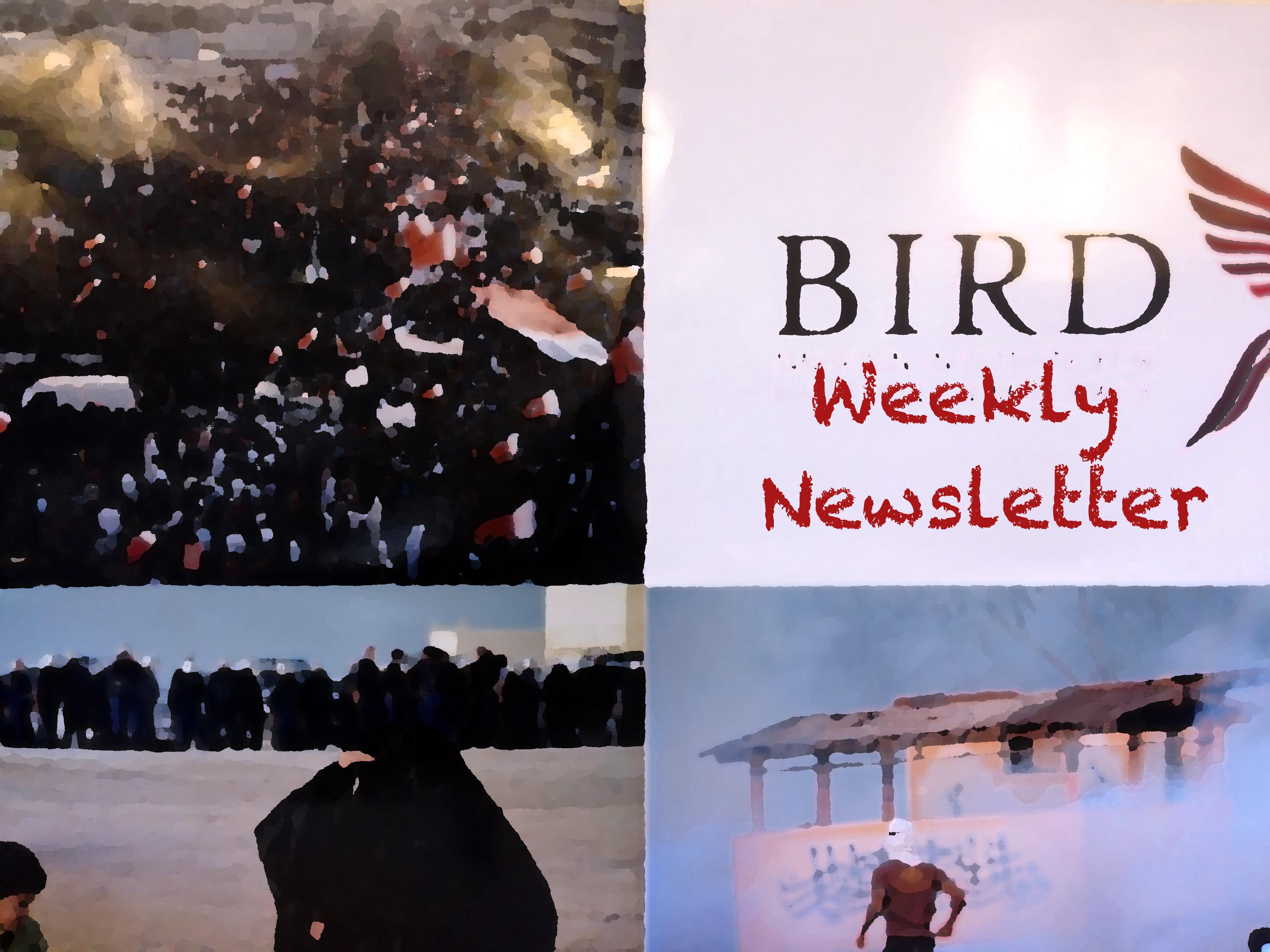 bird newsletter no47  image