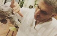 Blog: Why the UK Must Call for Nabeel Rajab's Release