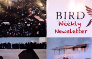 BIRD Weekly Newsletter #58: Isa Al-Aali granted asylum