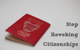 Stop Revoking Citizenships – BIRD Publishes Full Documentation