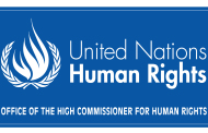 UN Reveals Alarming Surge in Reprisals For Human Rights Defenders Cooperating with UN